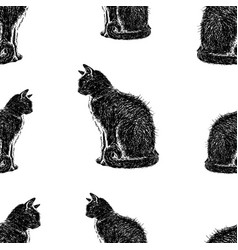 pattern black sitting cats vector image