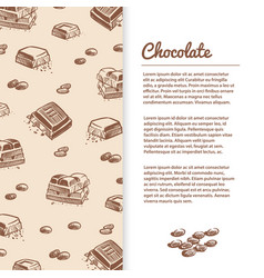 sketched chocolate bars flyer or banner template vector image