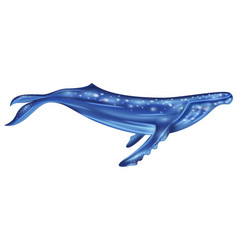 Watercolor blue whale vector