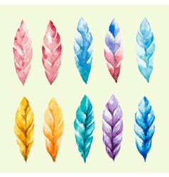 Set of colored watercolor feathers vector image vector image