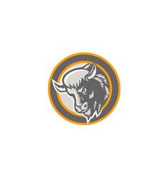 American Buffalo Bison Head Circle Retro vector image