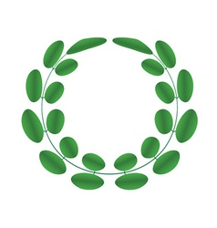 Acacia wreath vector