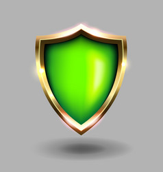green and gold shield icon on grey background vector image