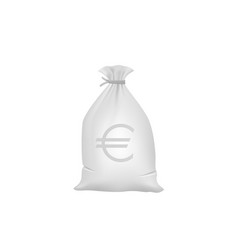 grey money bag with euro sign vector image