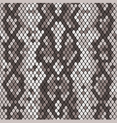 Snakeskin seamless pattern realistic texture of vector