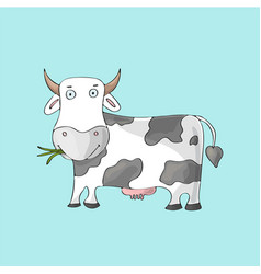 white cute cow on blue background isolated vector image