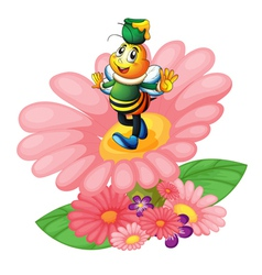 honey bee and flowers vector image vector image