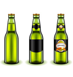 green beer bottle design 3d realistic vector image vector image