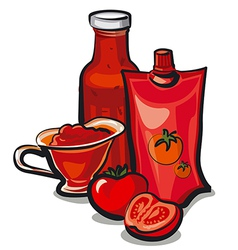 tomato sauces vector image