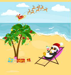 Cartoon penguin resting in hammock with drink near vector