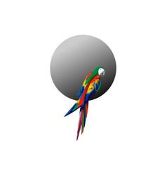 parrot logo idea design scarlet macaw bird vector image