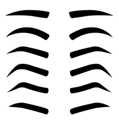 Set of various types eyebrows isolated vector