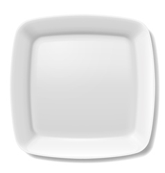 White plate vector image