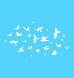 silhouette black fly birds on a blue vector image vector image
