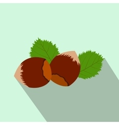 Hazelnut flat icon with shadow vector