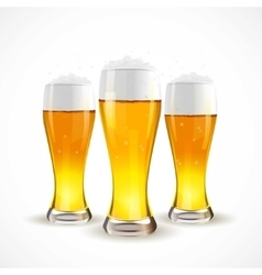 Realistic Isolated glass of beer vector