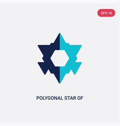 Two color polygonal star six points icon from vector