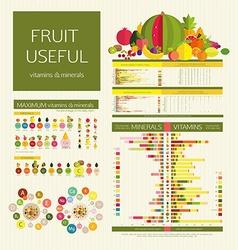 Usefulness of fruit vector image