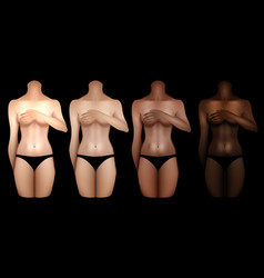 women bodies templates vector image