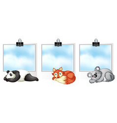 three banner template with cute animals vector image