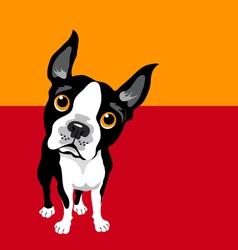 Boston terrier art square design template vector