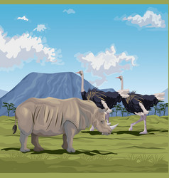 Color scene african landscape with rhino and herd vector