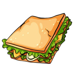 Delicious sandwich with lettuce vector image