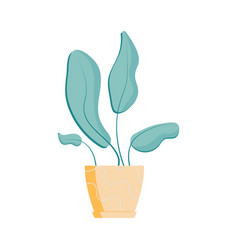 flat house plant icon vector image