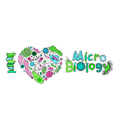 microbiology poster image vector image