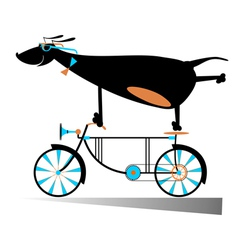 On the bike vector