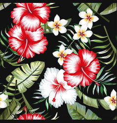 Tropical flowers foliage black background seamless vector