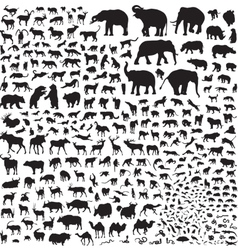silhouettes of wildlife Asia vector image