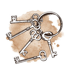 vintage keys on ring over watercolor background vector image vector image
