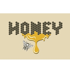 Bee and honey vector