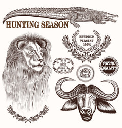 collection hand drawn savanna animals vector image