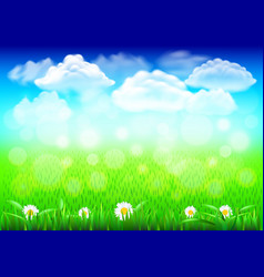 field with green grass 3d realistic background vector image