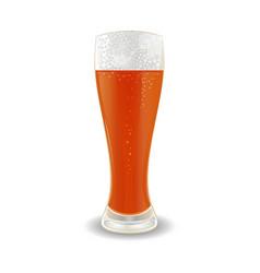 glass of beer vector image