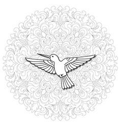 Hummingbird mandala composition vector