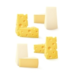 Set of Pieces Cheese Swiss Bri Camembert Isolated vector