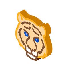 tiger animal isometric icon vector image