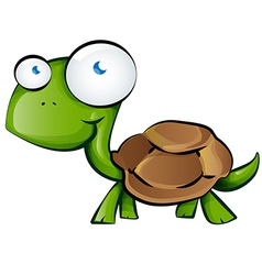 tortoise cartoon vector image