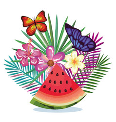 tropical garden with watermelon vector image