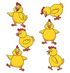 Cute chicken cartoon set vector image