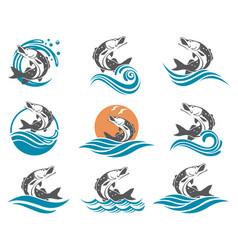 pike fish set vector image vector image