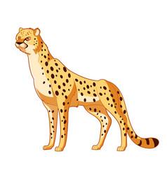 cartoon smiling cheetah vector image