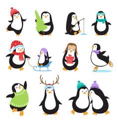 Cute cartoon penguins winter holidays vector