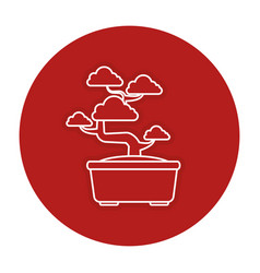 Bonsai tree isolated icon vector