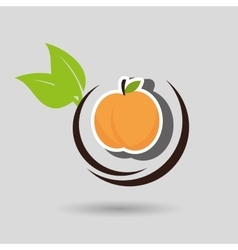 healthy life style food vector image