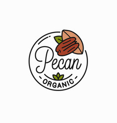 pecan nut logo round linear on white vector image