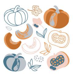 Pumpkin autumn vegetable hand drawn vector